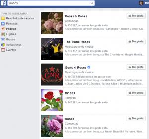 busqueda_facebook_roses